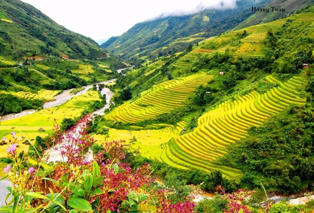 SAPA 2 DAYS - 1 NIGHT EASY TREKKING ( 1 NIGHT HOTEL STAY)